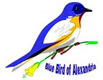 Blue Bird of Alexandria II - a