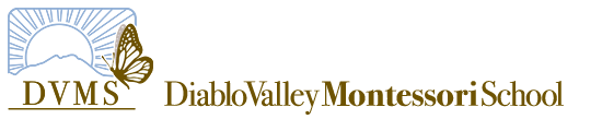 DIABLO VALLEY MONTESSORI SCHOOL, INC. #2