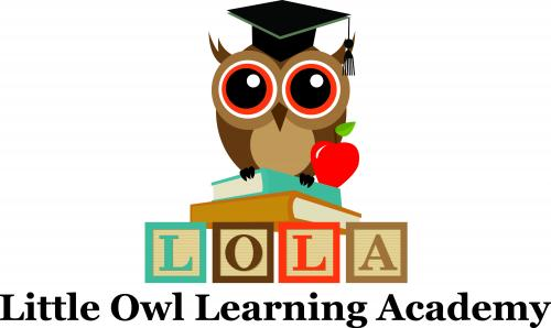 Little Owl Learning Academy