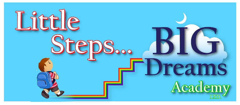 Little Steps Big Dreams Academy