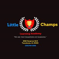 LITTLE CHAMPS LEARNING ACADEMY