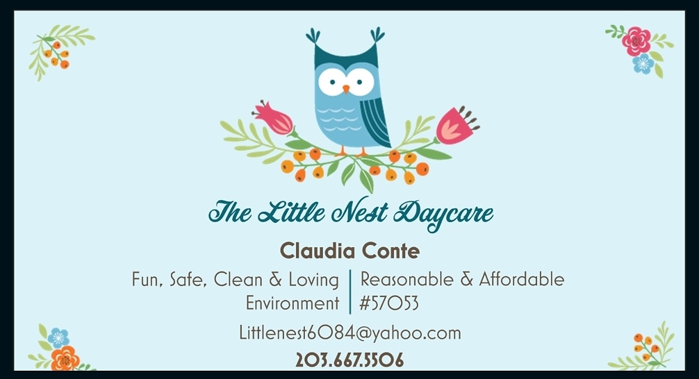 The Little Nest Day Care