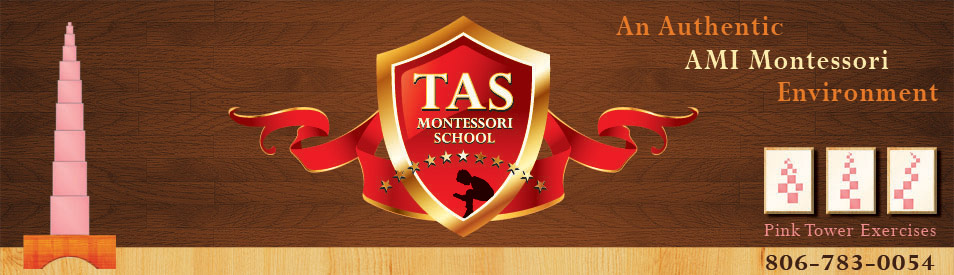 Tas Montessori School
