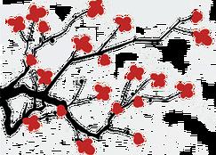 cherry blossom academy garden grove ca
