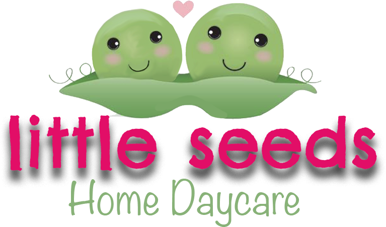 Little Seeds Home Daycare
