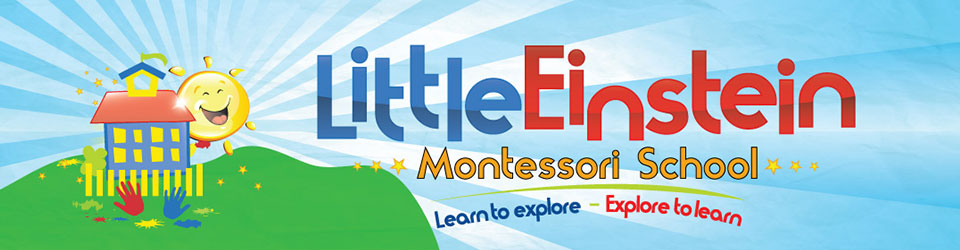 Little Einstein Montessori School